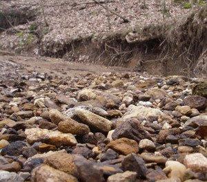Pleistocene Carbondale.