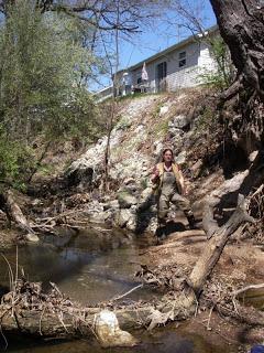 Saving trees in an incised urban stream.