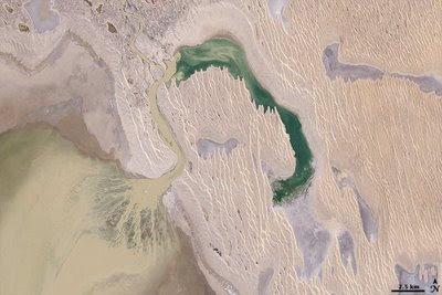 Dunes and a beautiful delta in Lake Eyre.