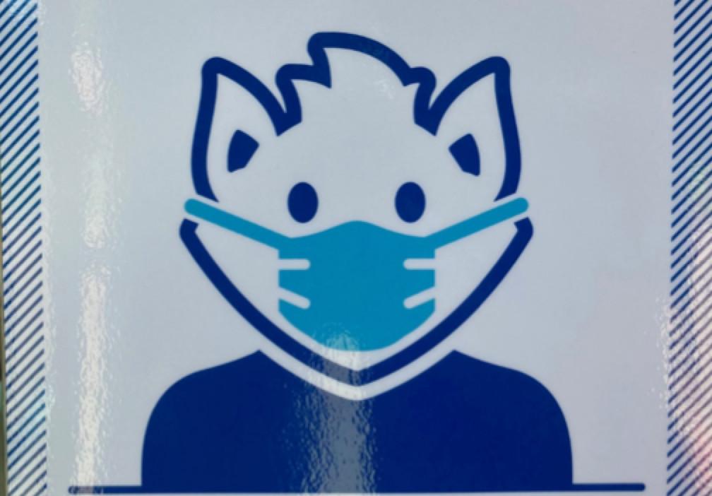 A masked Billiken